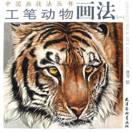 工笔动物画法(一)