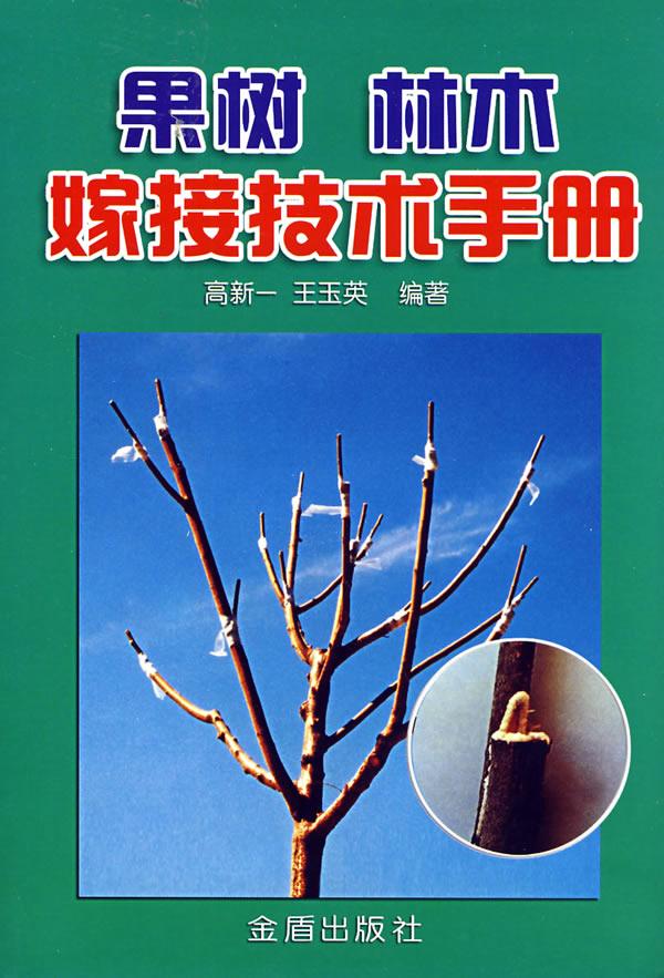 桃树芽接技术图解