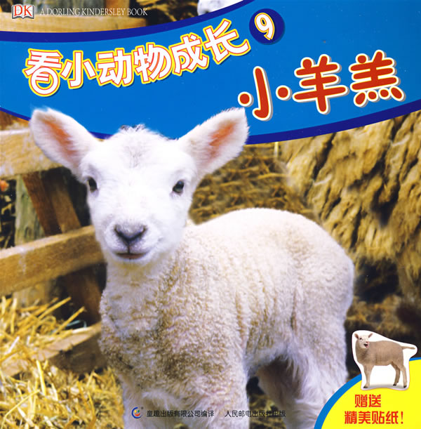 看小动物成长9:小羊羔