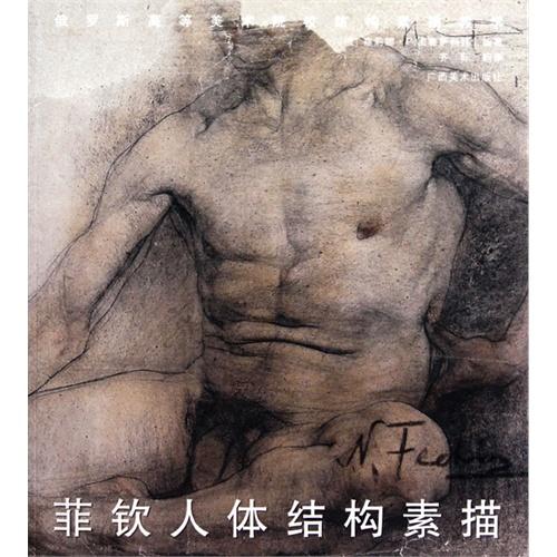 菲钦人体结构素描