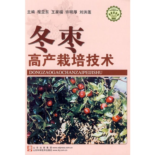 (四)枣树干腐病 (五)枣叶斑点病