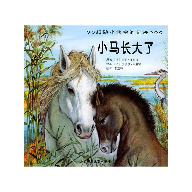 小马长大了——跟随小动物的足迹(注音版)