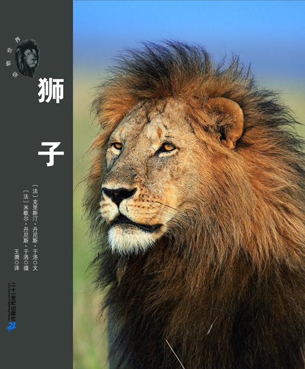 荒原兽王--狮子 动物世界大写真