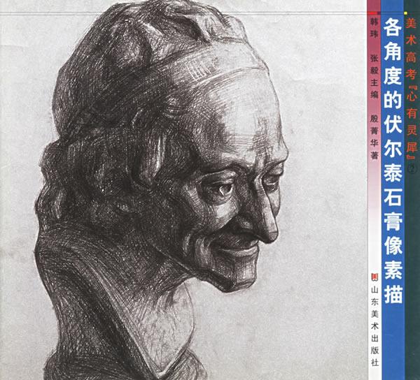各角度的伏尔泰石膏像素描/美术高考心有灵犀