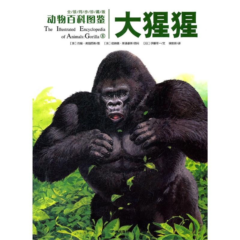 动物百科图鉴:大猩猩