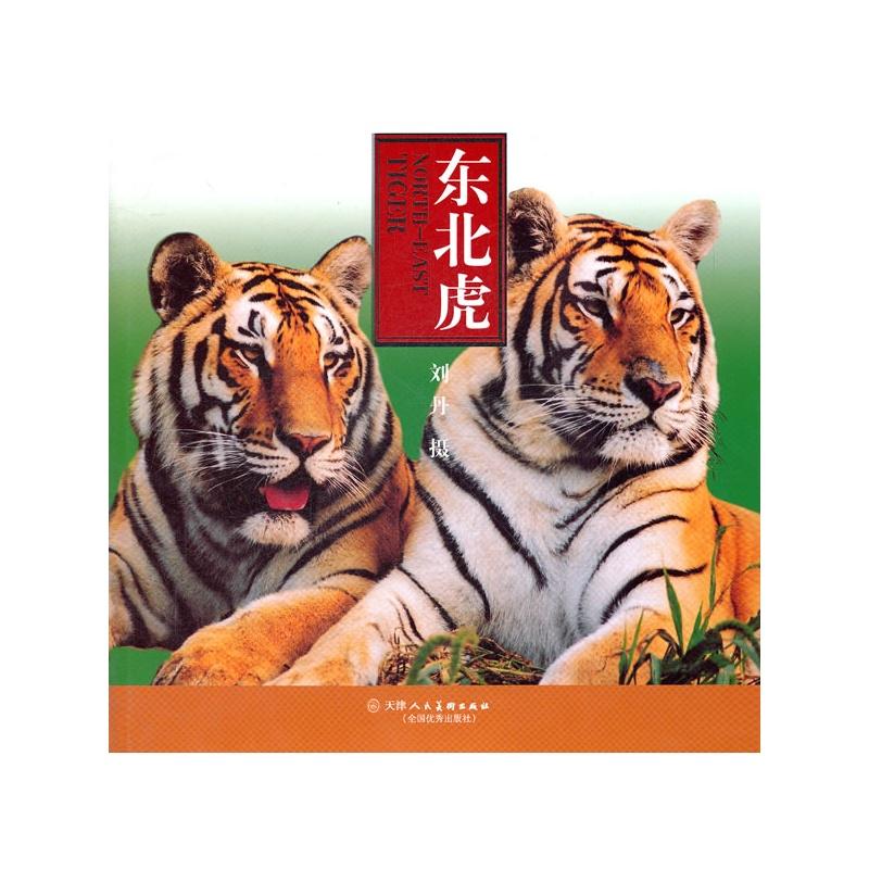老虎累趴下的可爱图片