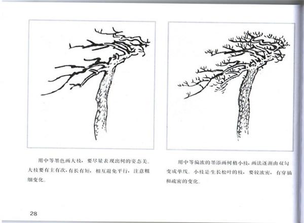 三 松树的画法  四 塔松的画法与其步骤  五 柳树的画法与其步骤  六