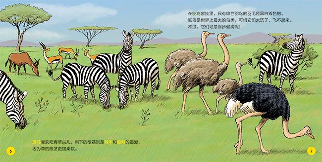 游戏草原图书馆:大科学上的动物小时候打通关亲亲图片