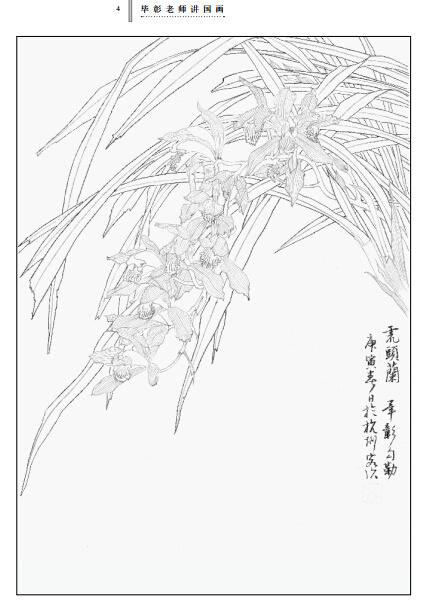 《毕彰老师讲国画 工笔花卉白描技法》(毕彰.)