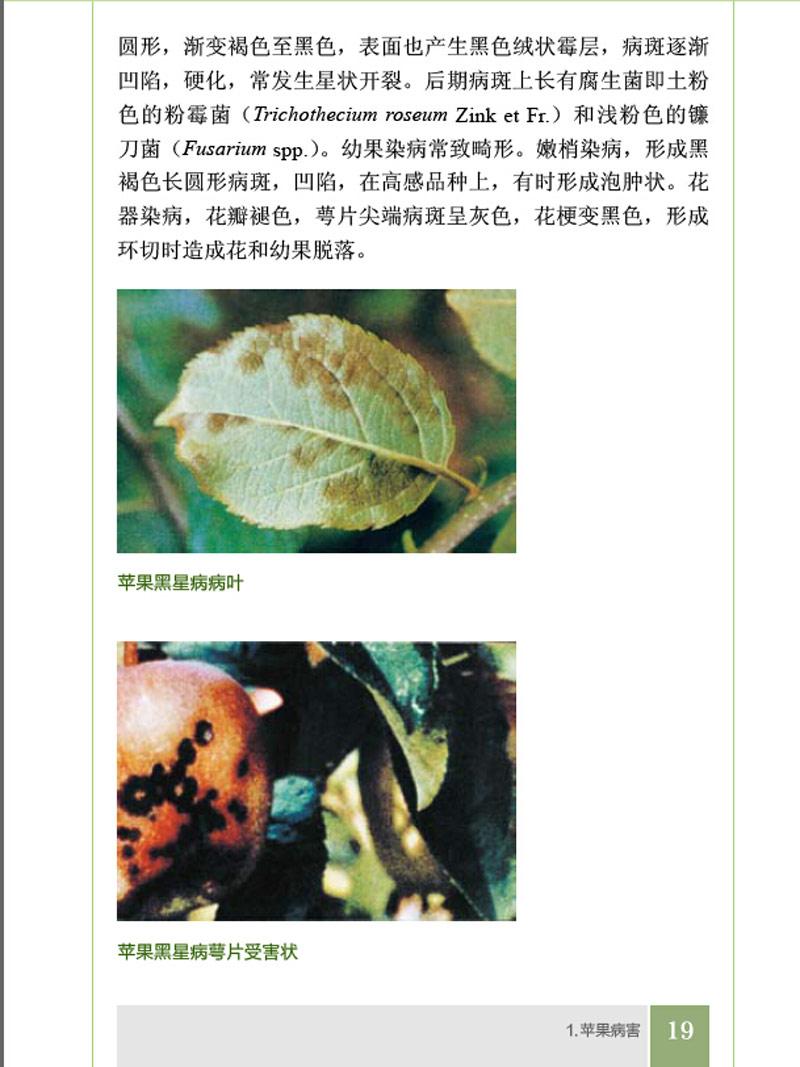 果树病虫害防治丛书--苹果病虫害防治原色图鉴