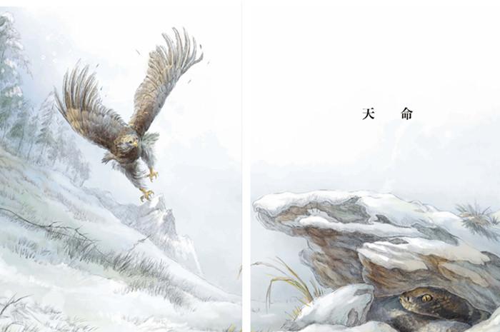 初中动物优美绘画作品
