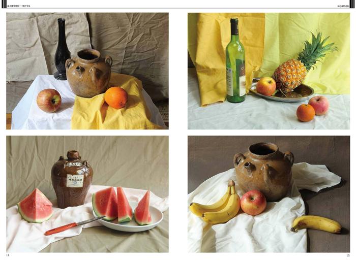 美术辅导教材 照片写生 组合静物色彩 写真集