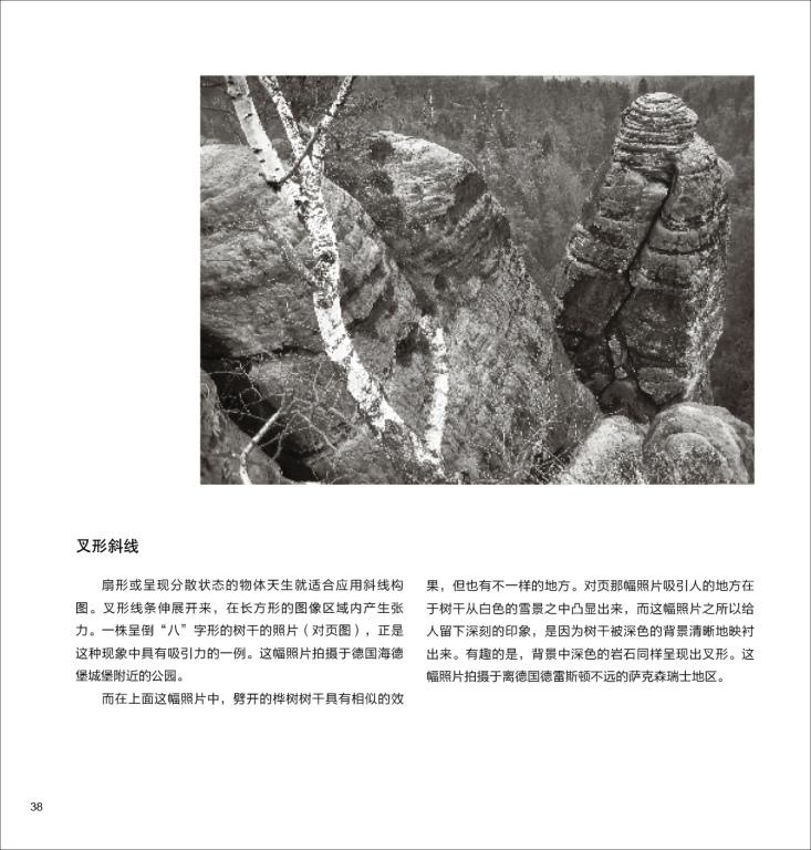 摄影的构图 图像设计的法则图片