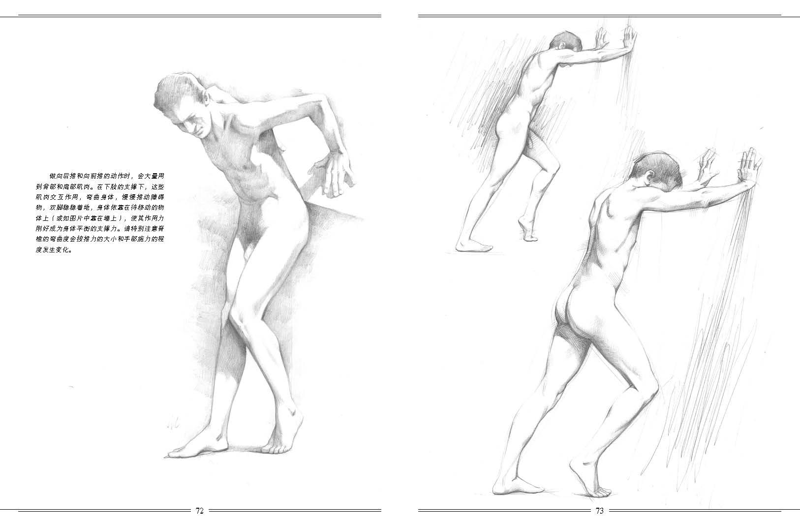 人体素描结构与方法---意大利名家经典绘画教程-w [意] 乔瓦尼