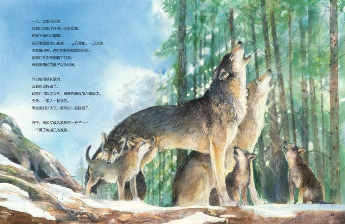 《桑德拉带你走进动物王国(重建狼族)》