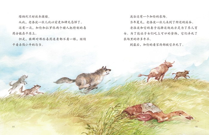 绘本西顿动物故事(套装全四册)