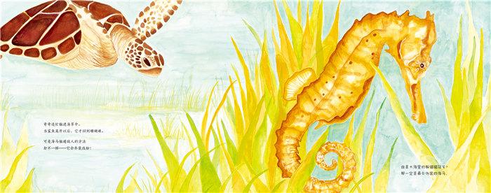 你知道什么是虎鲸吗?你知道虎鲸以什么为食吗?世界上最长寿的虎鲸族长是谁吗? 短吻鳄为什么要躲猫猫?小田鼠在它的田野探险之旅中都遇到了什么趣事,动物会互助吗?驼鹿小弟如何靠大地之声找到回家的路?海龟在珊瑚礁间的生活如何? 快到这套超级有趣的科普图画书《动物成长故事绘本》里寻找答案吧! 《动物成长故事绘本》是一套6本书组成的科普故事绘本:太平洋中遨游的虎鲸,大草原上探头的田鼠,小镇边缘生活的驼鹿,珊瑚礁中嬉戏的海龟,沼泽中潜伏的鳄鱼,神秘的孵蛋者。 动物们分别通过自己的历险故事,让我们看见它们生活的环境,了