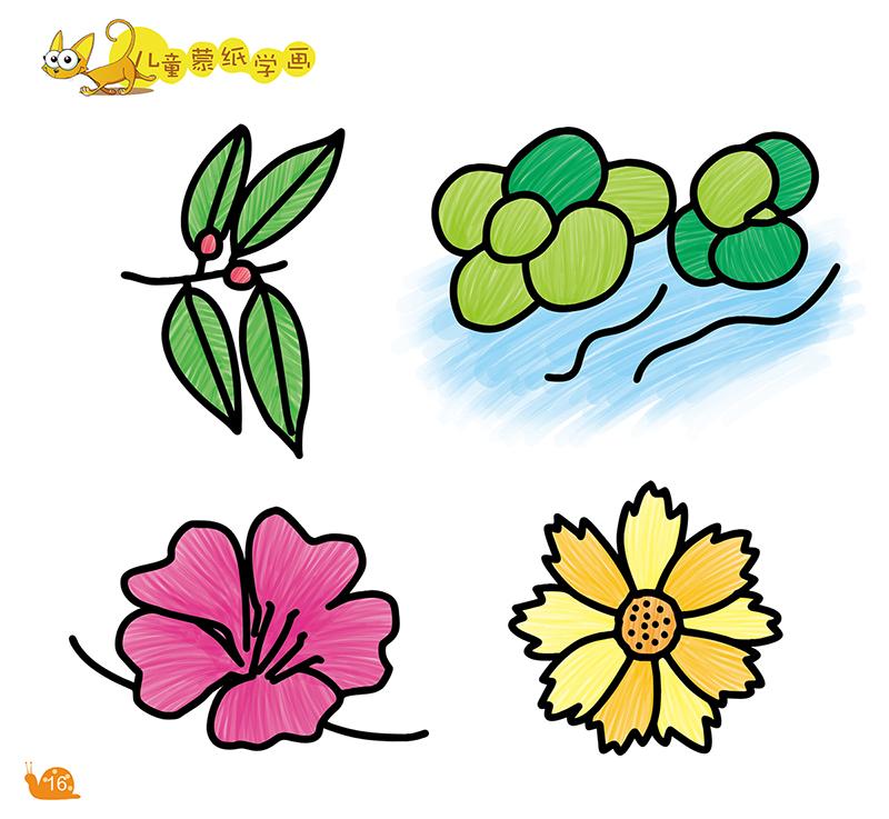 儿童蒙纸学画61植物-百道网