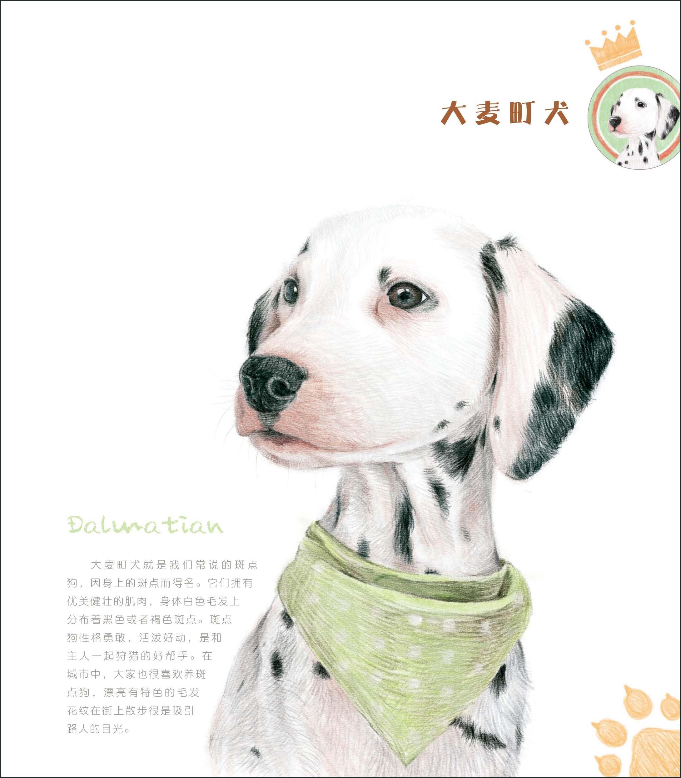 【rt7】狗狗绘(汪星人的逆袭!我家的狗怎么能这么可爱!