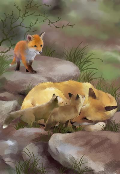 倔小孩动物小说之火狐