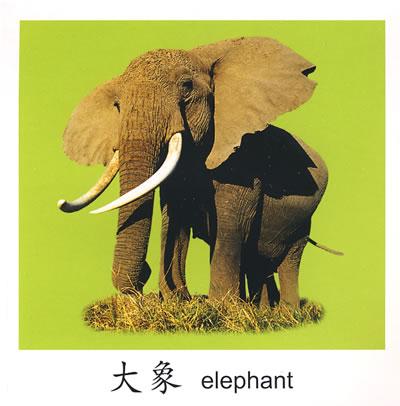 书——动物乐园 商品介绍