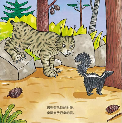 神奇的动物系列共4册手绘科普,04岁宝宝必备色彩鲜艳饱满形象