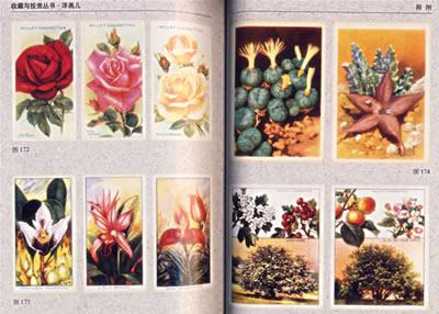 古董与珍藏  12.动物与植物 五,国际洋画儿收藏措施  1.