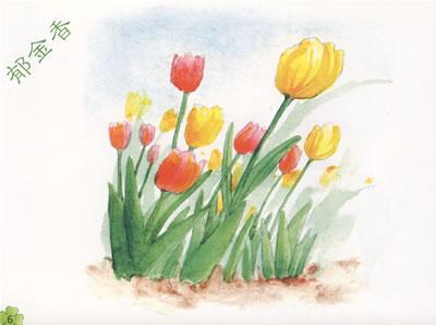 花卉大棚 手绘图