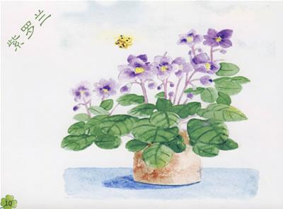 植物花卉小清新手绘图