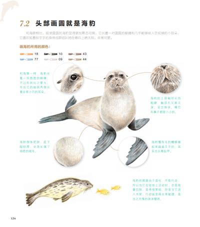 《飞乐鸟的色铅笔手绘; 动物绘38种可爱动物的色铅笔图绘; 动物绘:38