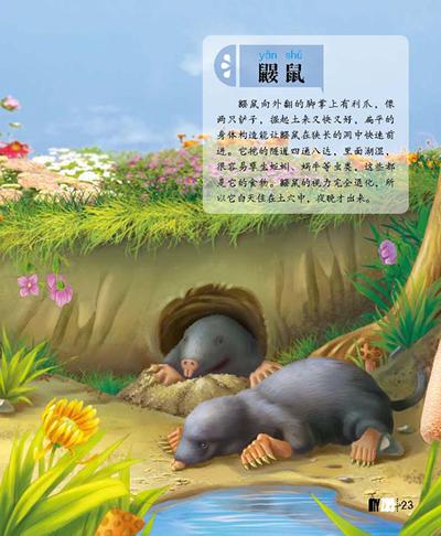 我的动物园:哺乳动物卷/妙趣横生的动物彩色图鉴(中国