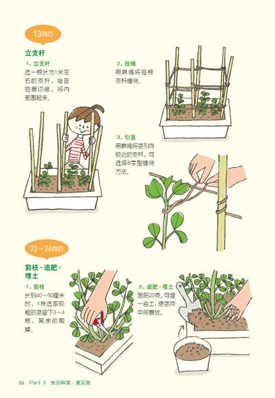 """种书"""":在阳台上种菜"""