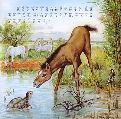 《小马长大了——跟随小动物的足迹(注音版)》(