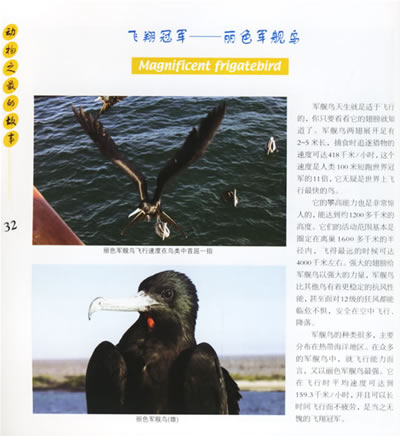 《动物之最的故事——生命的印迹丛书》(金鹰达.)