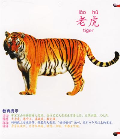 壁纸 动物 虎 恐龙 老虎 桌面 400_464