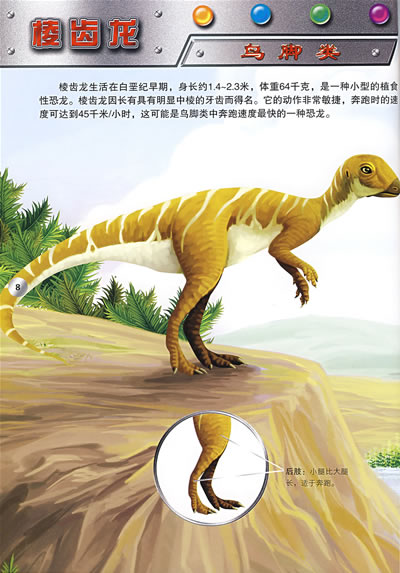 恐龙的生理结构及
