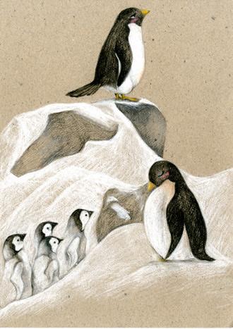 《奇妙生命·动物成长笔记:最有爱的相遇(彩图版)》
