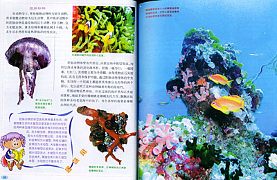 海底世界进行了细致的描绘,详尽描写了形形色色的海洋生物,并对四大洋