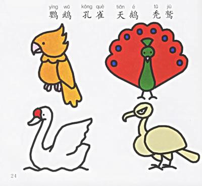 怎么画鸽子简单步骤