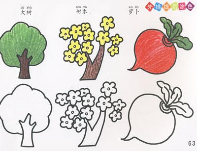 手把手教你画:动物植物篇