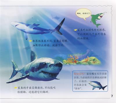 水生动物:冠军宝宝小百科金牌读物